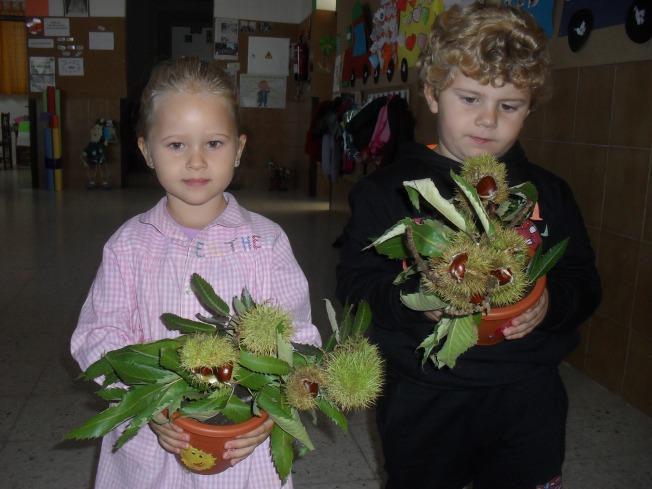 Rodrigo y Esther nos han mostrado sus pequeños castaños.